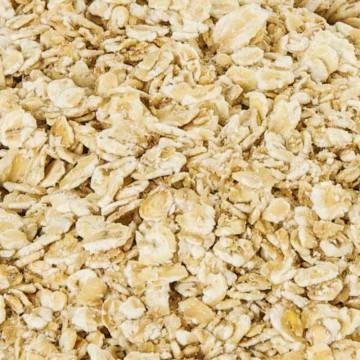Flocons d'avoine gros (100 g) vrac