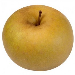 Pomme canada (500 g) LOCAL